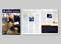 SPCA Animal Voice magazine